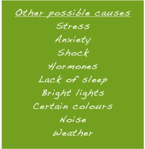 alt=migraine causes